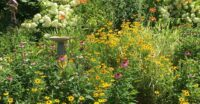 Meeting and garden tour July 13th